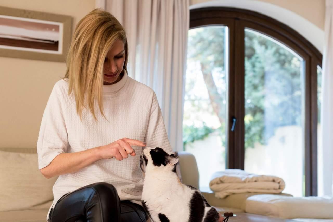 El método de la Encantadora de Gatos para educar a un gato o corregir la conducta o comportamientos indeseados